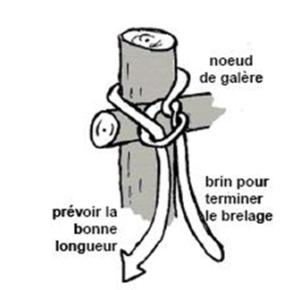 brelage1