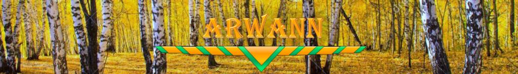 cropped-bandeau-arwann-15.png